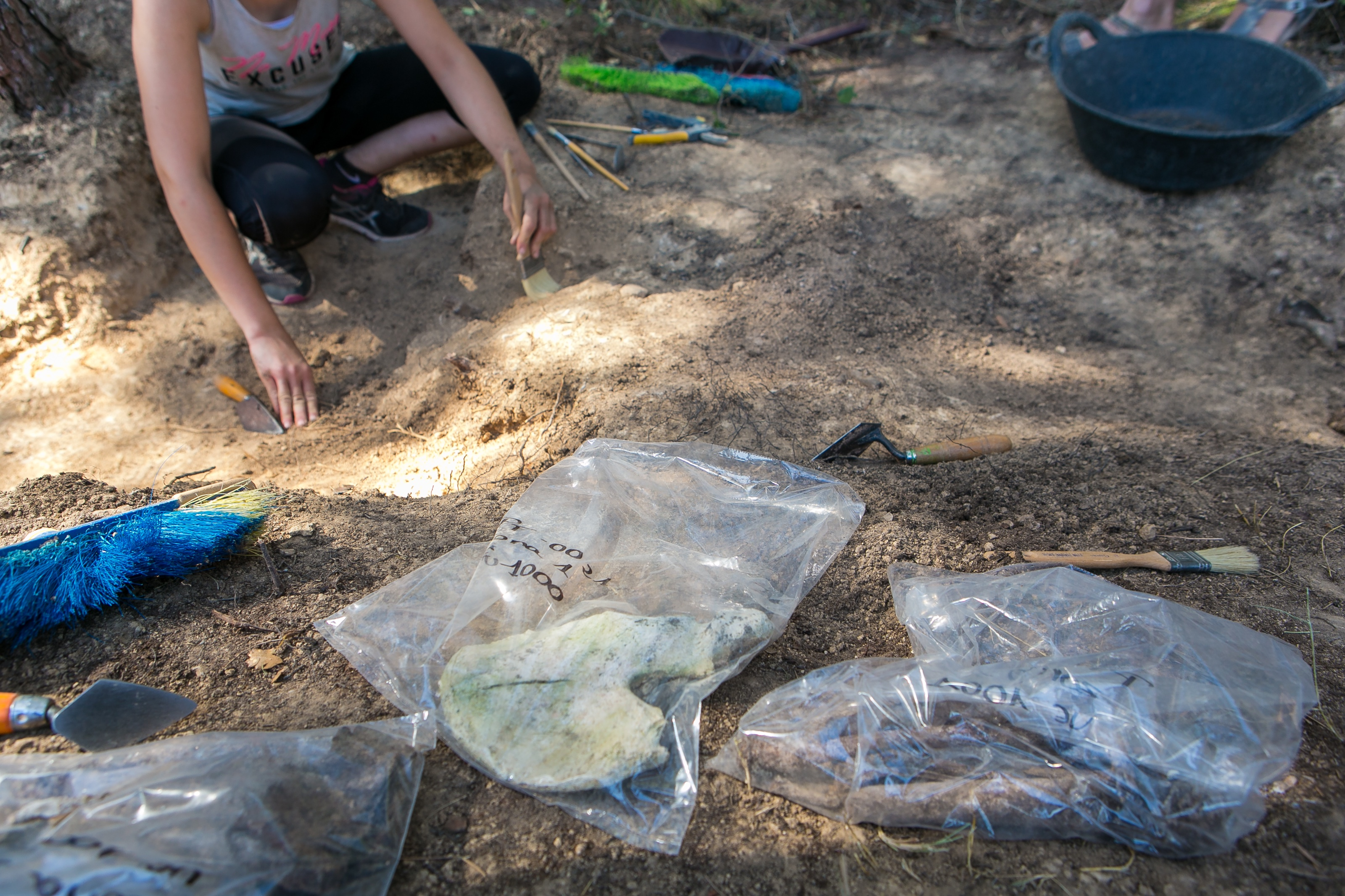 Selection of bone pieces for the extraction of DNA in the cemetery of Castellar del Vallès (Barcelona), 2018. This allowed identification of the remains of an Italian anti-Franco guerrilla who was murdered by the Civil Guard in 1949.