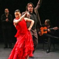 Flamenco Program Honors the Vets