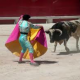 Bullfighting to Be Televised Once Again in Spain