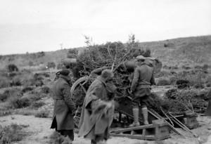 Photo Unit #: A284  American Artillery unit emplacement, Teruel front